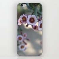 Little Purples iPhone & iPod Skin