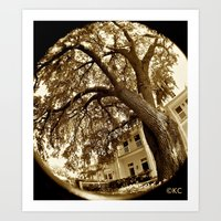 The Oak Art Print