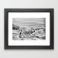 Snowy Lamb Framed Art Print