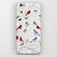 Winter Birds iPhone & iPod Skin