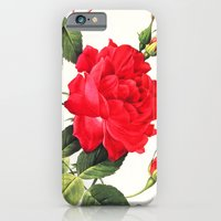 iPhone & iPod Case featuring IX. Vintage Flowers Botanical Print by Pierre-Joseph Redouté - Red Rose by Anne Dante