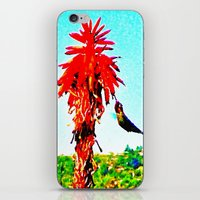 Stickybeaking Hummingbird iPhone & iPod Skin