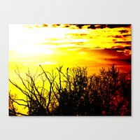 lonely crow Canvas Print