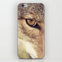 In The Eyes Of The Coyot… iPhone & iPod Skin