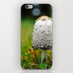 Fluffy mushroom iPhone & iPod Skin