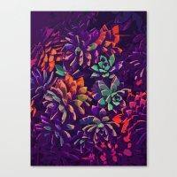 Cali Succulents 3 Canvas Print