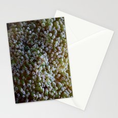 Arch Anemosis Stationery Cards
