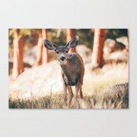 yeah i'm a deer .  Canvas Print
