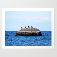 Art Print featuring Cormorants On The Big Ro… by Dan By The Sea