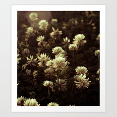FLOWERS II Art Print