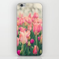 Tulips at Cheekwood iPhone & iPod Skin