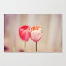 Pair of Tulips Canvas Print