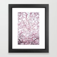 Sakura Bloom. Framed Art Print