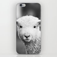 Lamb In Black And White iPhone & iPod Skin