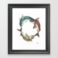 Circle of Fish Framed Art Print