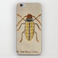 Urban Bug #3 iPhone & iPod Skin