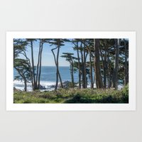 Into Lands End Art Print