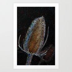 Golden Teasel Art Print