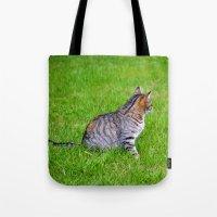 Orange and Tiger Cat Tote Bag