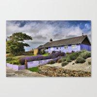 Lavender farm and shop Canvas Print