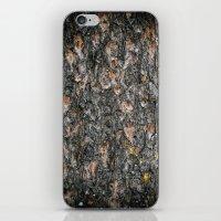 Tree Bark 1.0 iPhone & iPod Skin