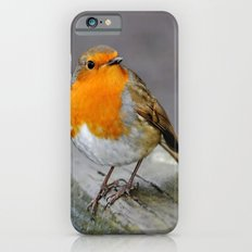 Cheeky Robin  Slim Case iPhone 6s