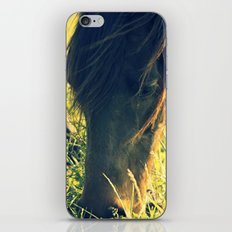 Grazing iPhone & iPod Skin