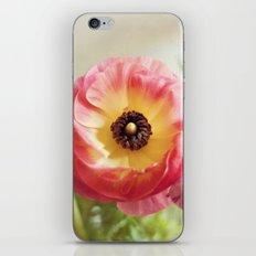 Ranculus iPhone & iPod Skin