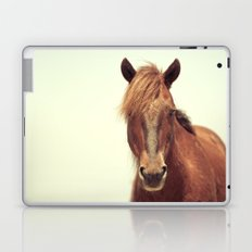 Outer Banks Laptop & iPad Skin