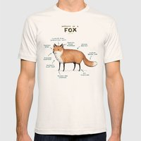 Anatomy of a Fox Mens Fitted Tee Natural SMALL