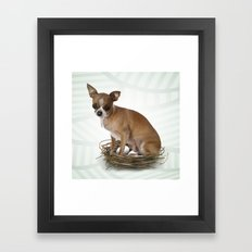 A little confused Framed Art Print