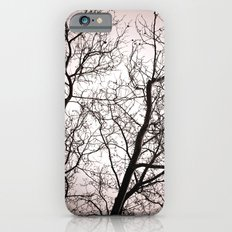 Branches in Winter iPhone 6s Slim Case