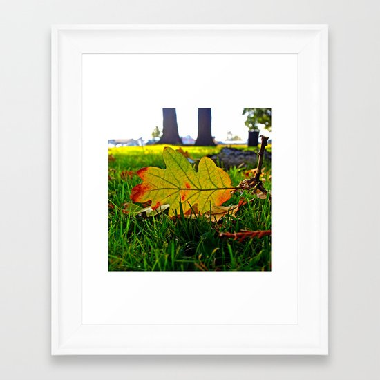 Early Autumn leaf Framed Art Print