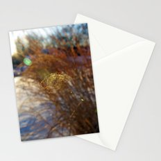 Curl Stationery Cards