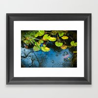 Lily pads, ripples and gold fish Framed Art Print
