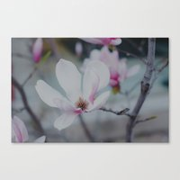 Sweet & Delicate Canvas Print