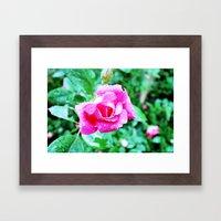 TOKEN FLOWER Framed Art Print
