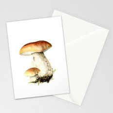 Bolet Stationery Cards