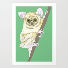 Bush Baby Art Print