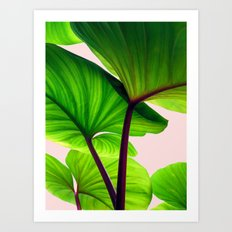 Charming Sequence Nature… Art Print