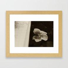 Peekabooo Framed Art Print