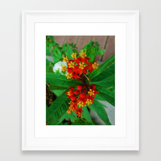 Orange and Yellow Flowers Framed Art Print