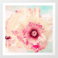 Pastel Poppy Art Print