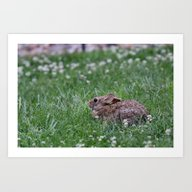 Art Print featuring Bunny Guy by Kealaphotography