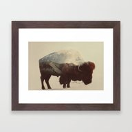 Framed Art Print featuring Buffalo by Andreas Lie