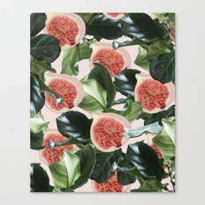 Figs & Leaves #society6 … Canvas Print