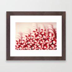 Candy Canes Framed Art Print