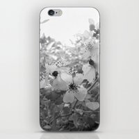 Wild Blossoms iPhone & iPod Skin
