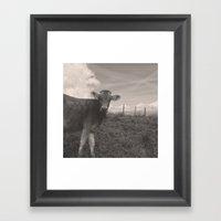 Vintage Cow Framed Art Print