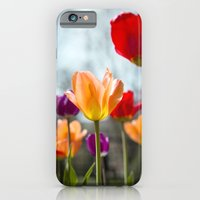 iPhone & iPod Case featuring Tulip Dance by The ShutterbugEye